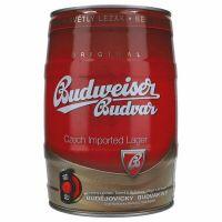 Budweiser 5% 5 ltr.